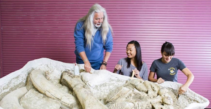 Professor and Students working with fossils
